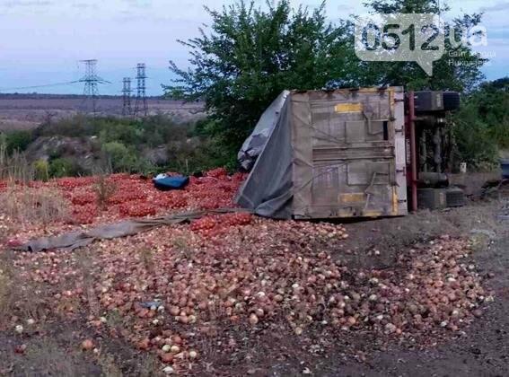 На Николаевщине разбился насмерть водитель грузовика - машина въехала в дерево, - ФОТО, фото-1