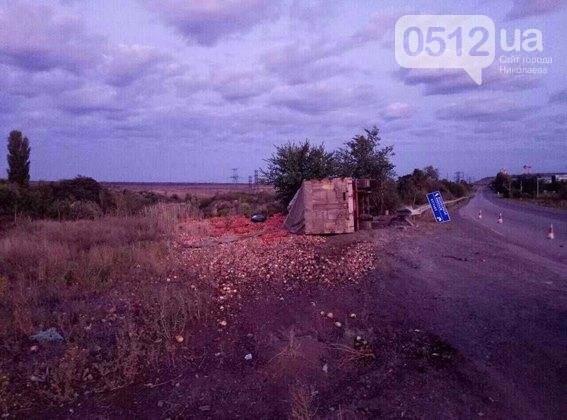 На Николаевщине разбился насмерть водитель грузовика - машина въехала в дерево, - ФОТО, фото-3