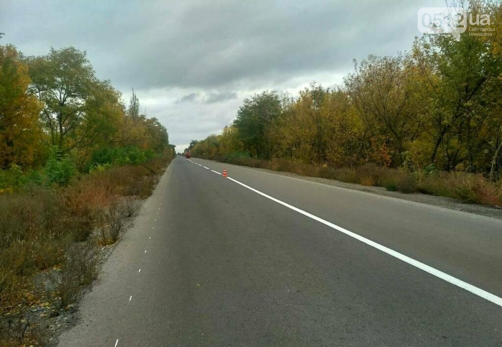 Дорожники нанесли разметку и установили знаки на трассе Н-11 Днепр - Николаев, - ФОТО, фото-7