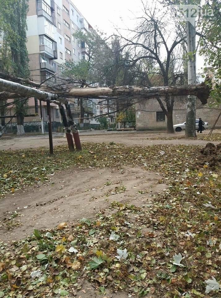 Дерево повредило теплотрассу
