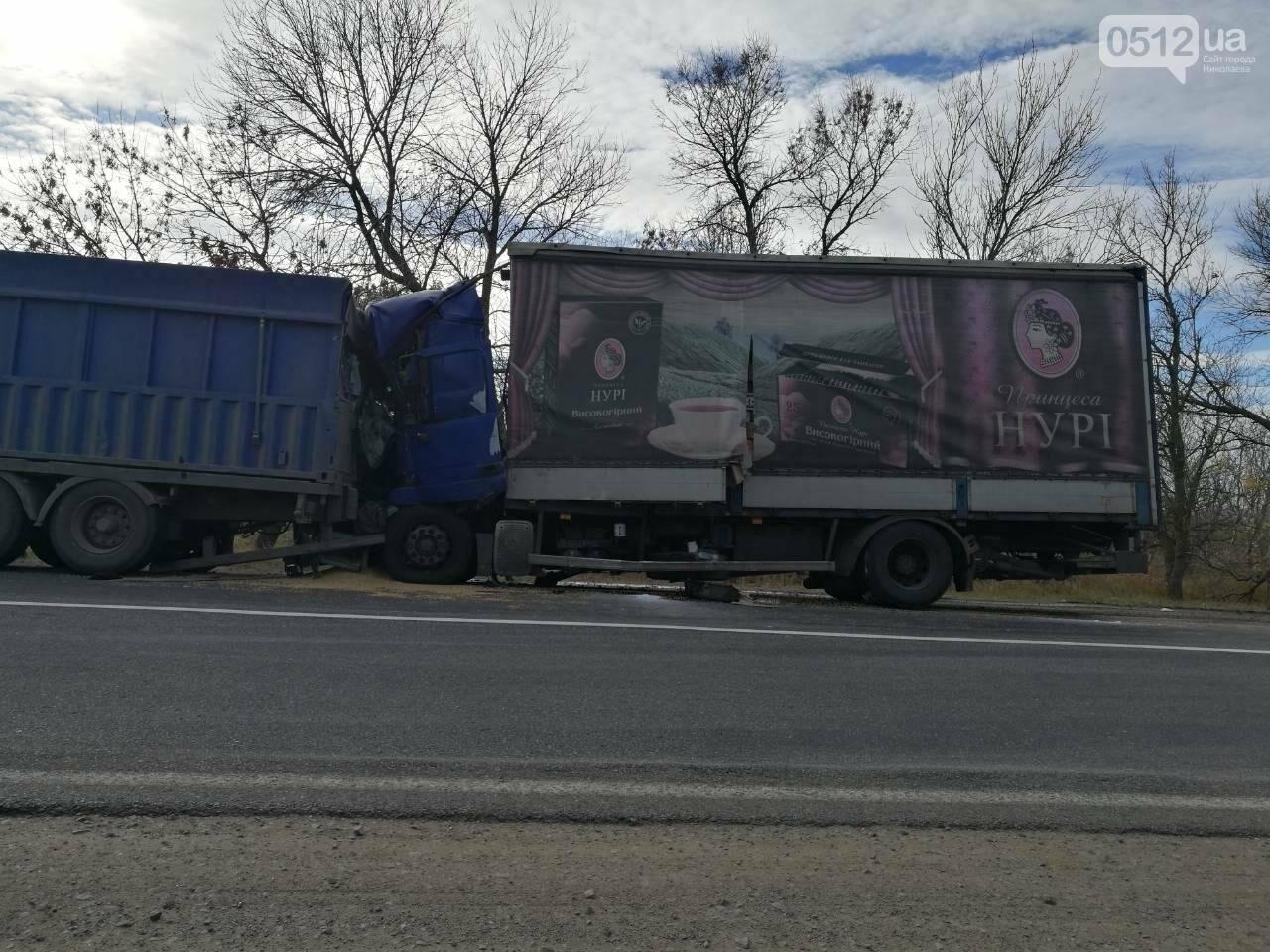 На Николаевщине столкнулись две фуры: есть погибший, - ФОТО , фото-3