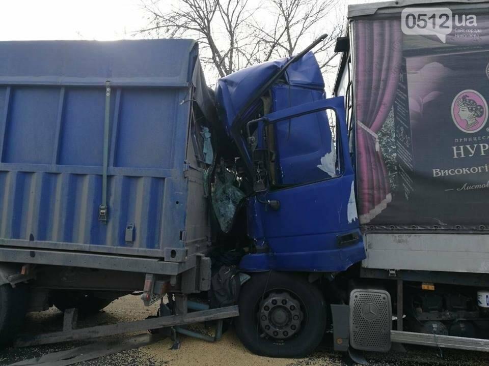 На Николаевщине столкнулись две фуры: есть погибший, - ФОТО , фото-5
