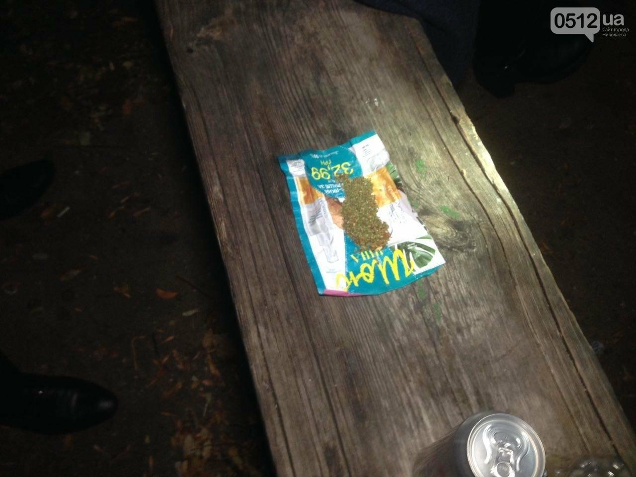 В Николаеве патрульные задержали компанию парней, куривших коноплю в парке возле яхт-клуба, - ФОТО, фото-6