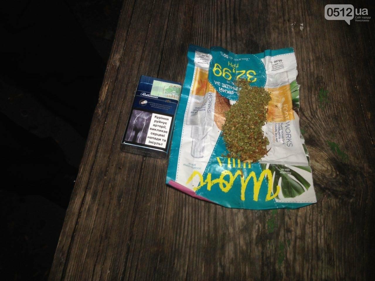 В Николаеве патрульные задержали компанию парней, куривших коноплю в парке возле яхт-клуба, - ФОТО, фото-3