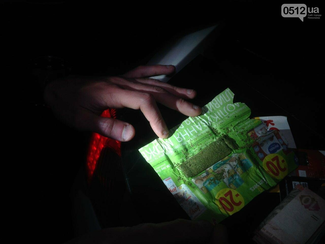 В Николаеве патрульные задержали компанию парней, куривших коноплю в парке возле яхт-клуба, - ФОТО, фото-2
