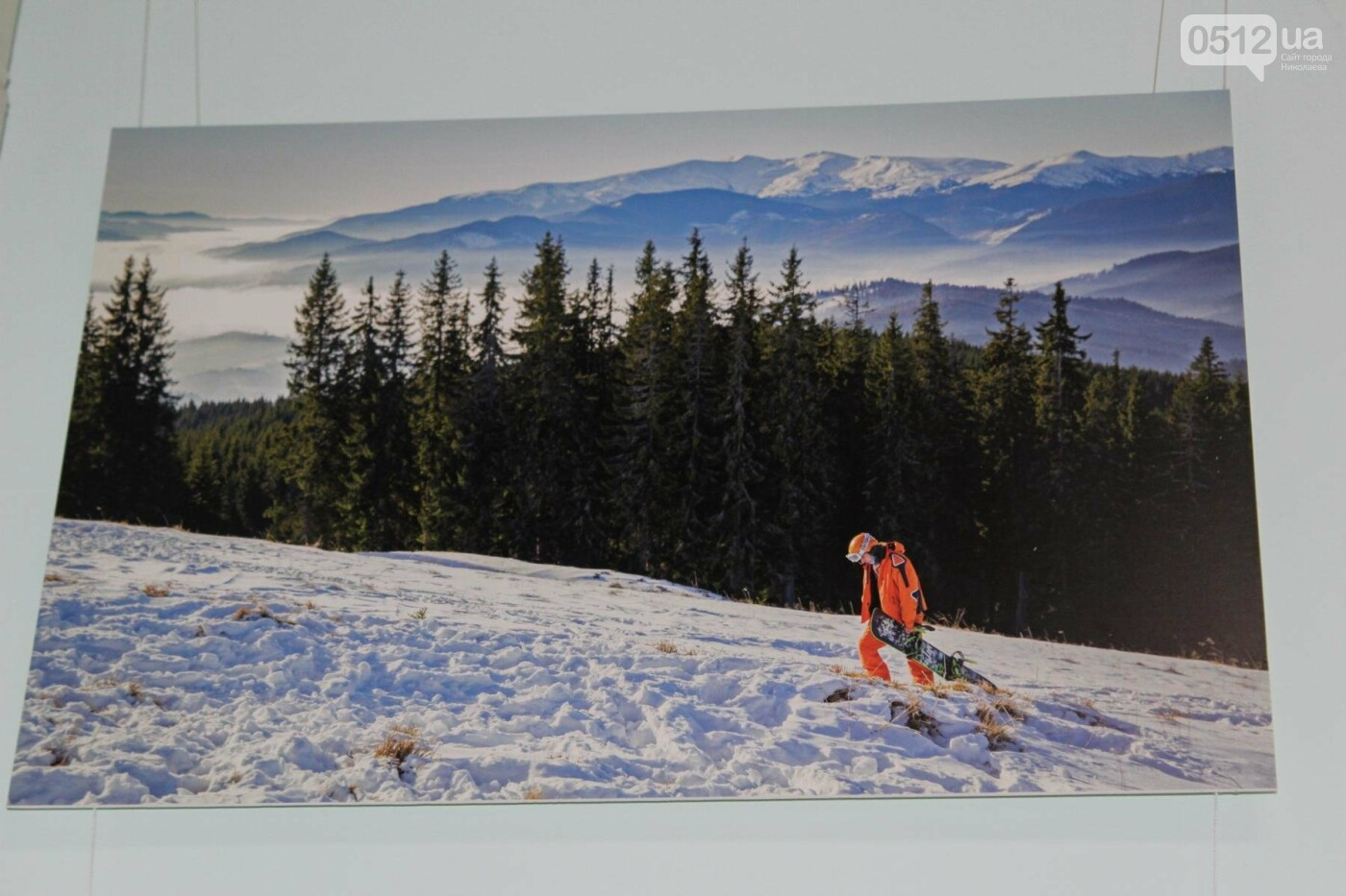 Николаевский фотограф Слава Поседай представила новую выставку «12+1» (ФОТО), фото-12