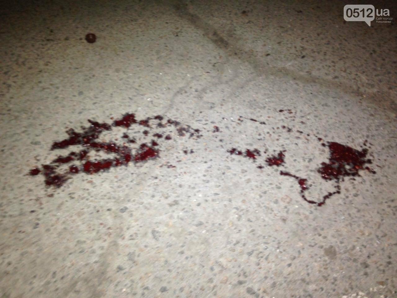"""В Николаеве на пешеходном переходе """"Ниссан"""" сбил военного - его с травмой головы госпитализировали, - ФОТО , фото-4"""