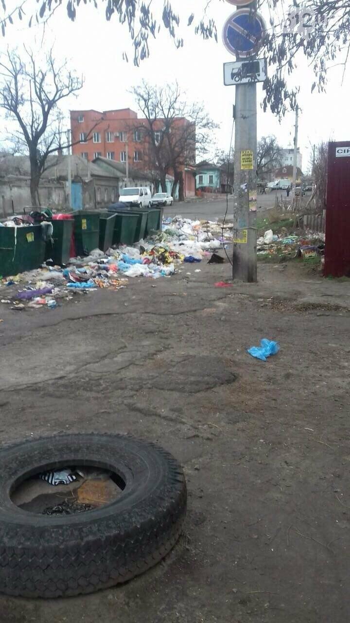 Мусорный коллапс: жители Николаева возмутились горами мусора, который не вывозят коммунальщики , фото-4