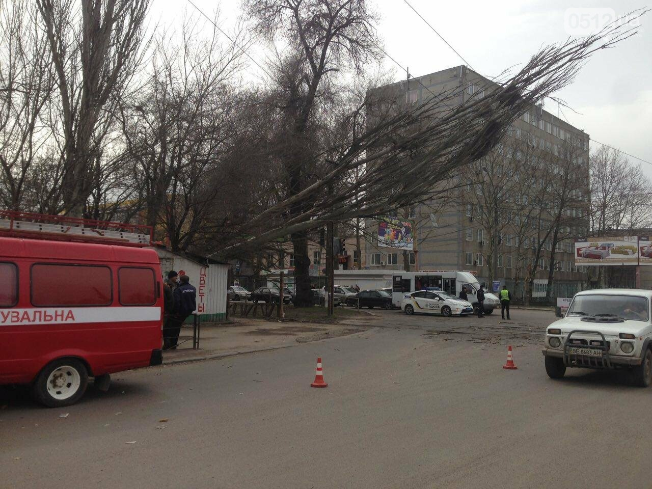 В Николаеве из-за сильного ветра дерево упало на дорогу и задело провода, - ФОТО, фото-3