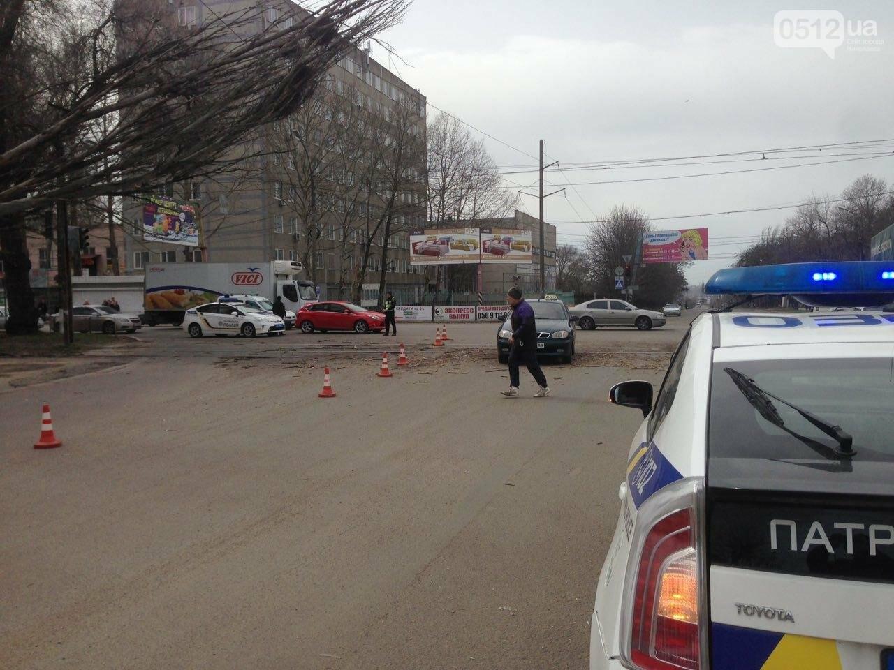 В Николаеве из-за сильного ветра дерево упало на дорогу и задело провода, - ФОТО, фото-1