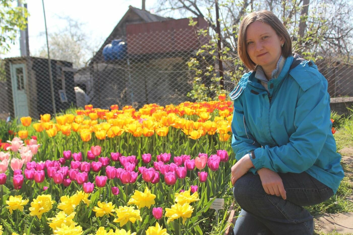 В Николаеве расцвела тюльпановая сказка,- ФОТОРЕПОРТАЖ , фото-2