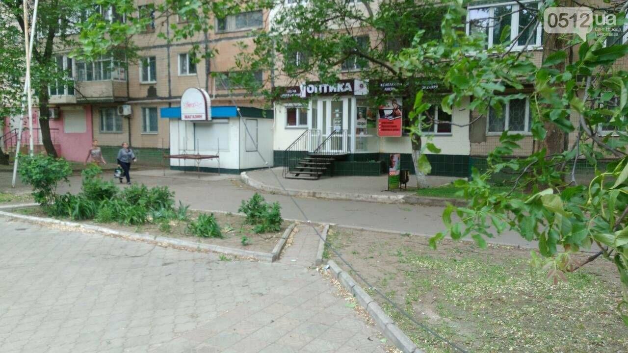 В Николаеве  повреждена линия электропередач из-за падения дерева, - ФОТО, фото-5