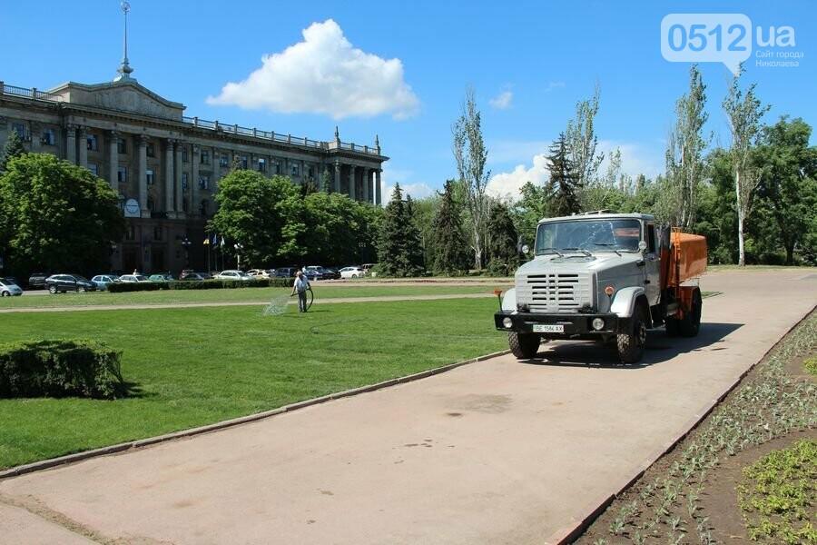 Свежо и зелено: главная николаевская площадь обрела новые краски, - ФОТО, фото-2