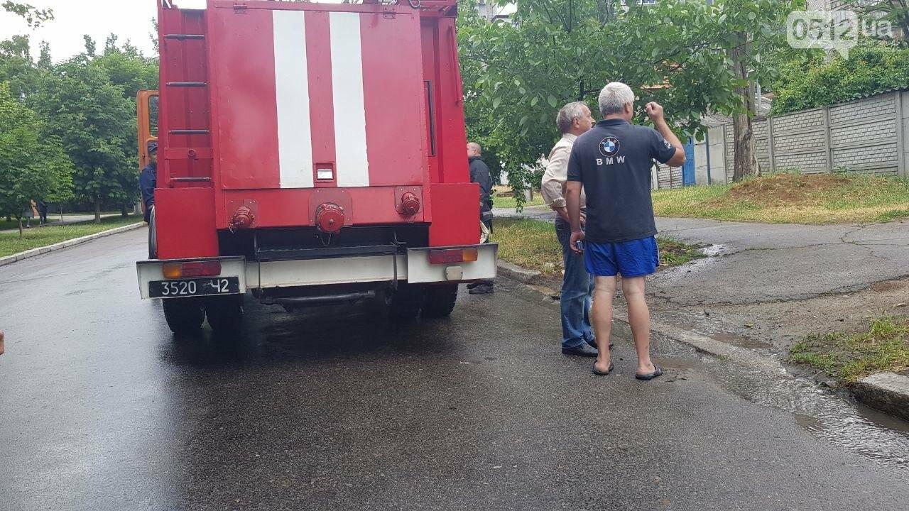 Николаевские спасатели выехали на пожар, а попали на шашлыки, - ФОТО, ВИДЕО, фото-2