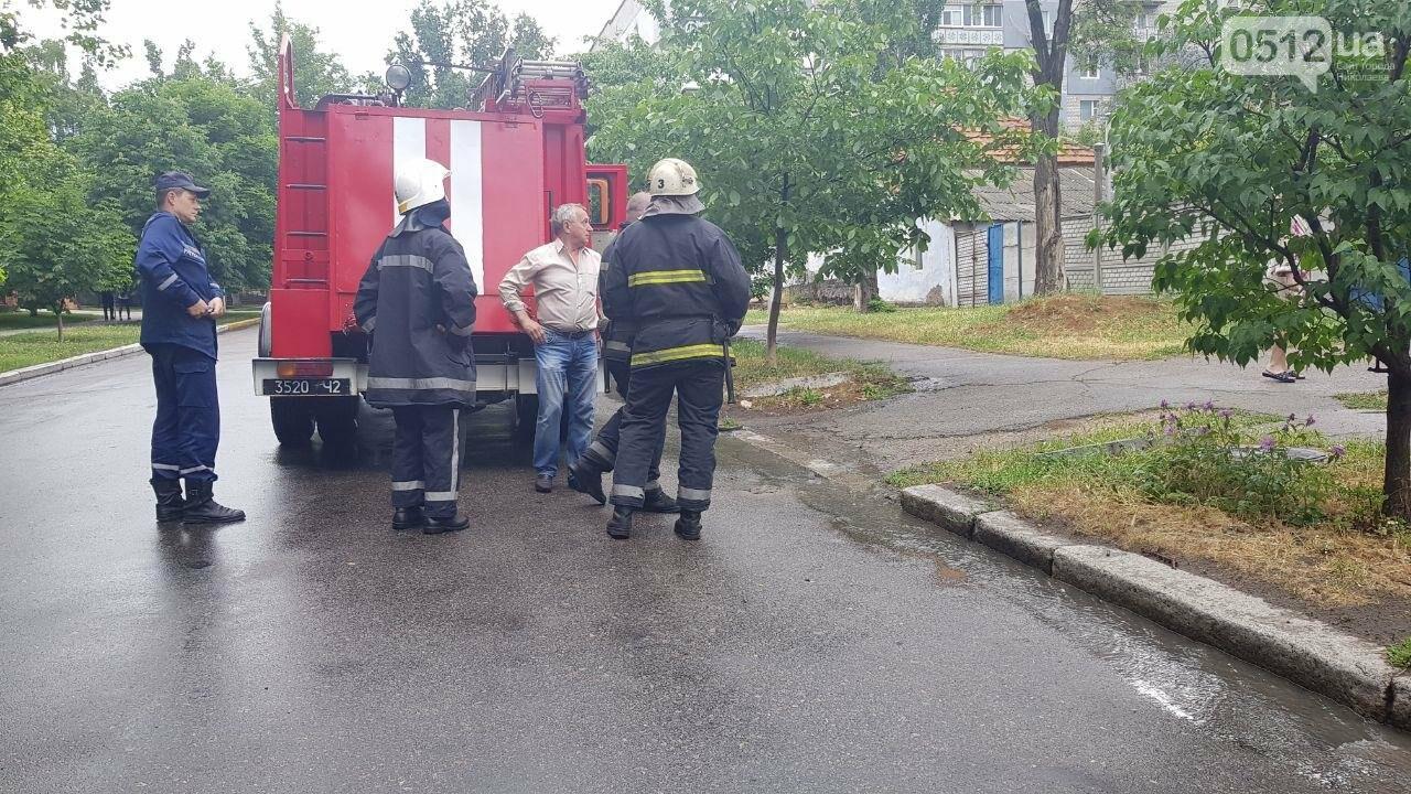 Николаевские спасатели выехали на пожар, а попали на шашлыки, - ФОТО, ВИДЕО, фото-3