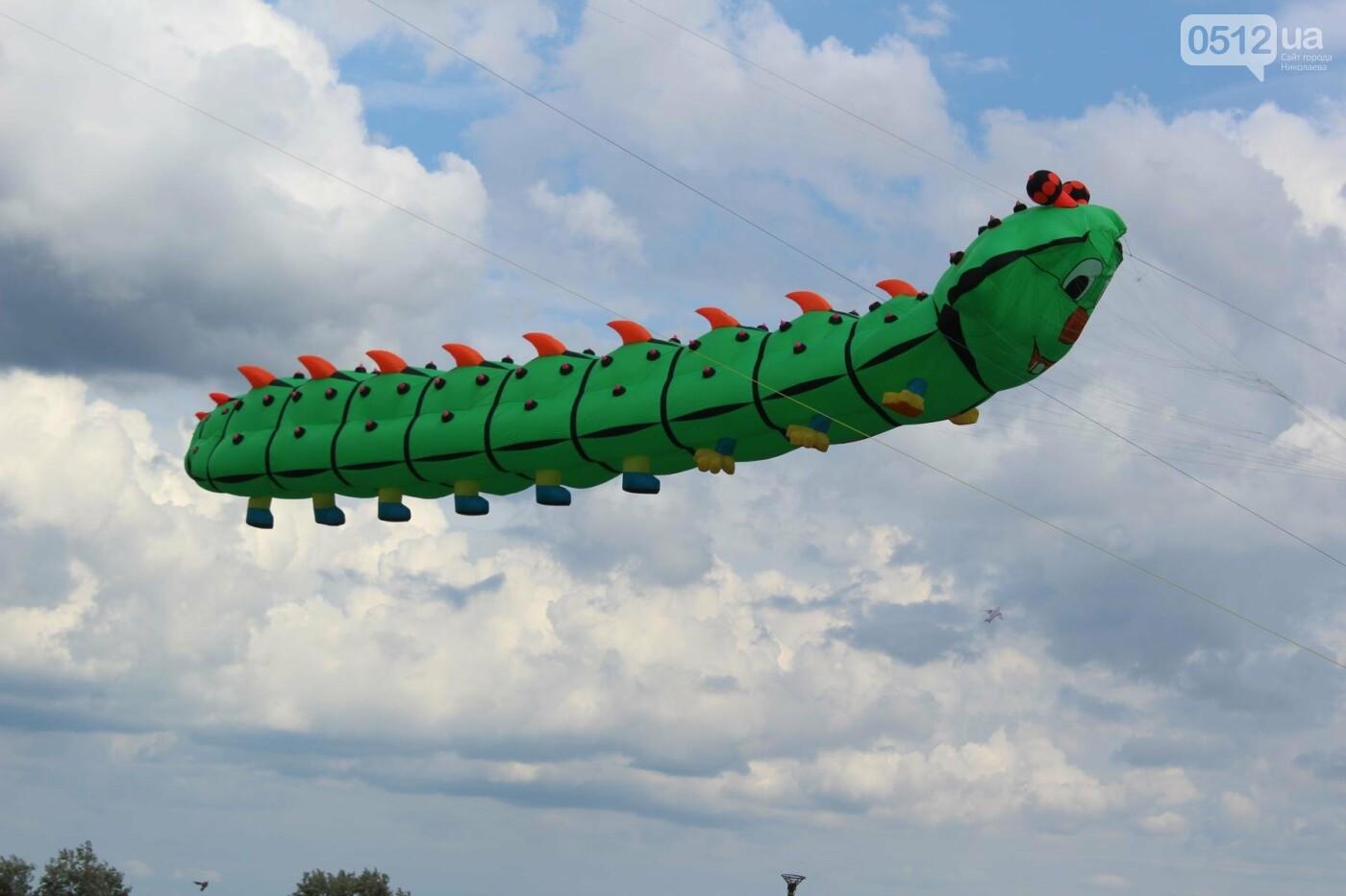 """""""Одно небо - один мир"""": в Николаеве прошел второй международный фестиваль воздушных змеев, - ФОТОРЕПОРТАЖ, фото-3"""