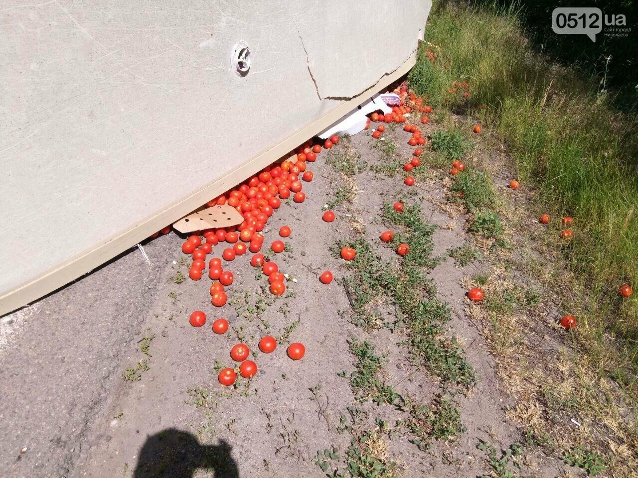 На трассе под Николаевом перевернулся грузовик с томатами, - ФОТО , фото-1