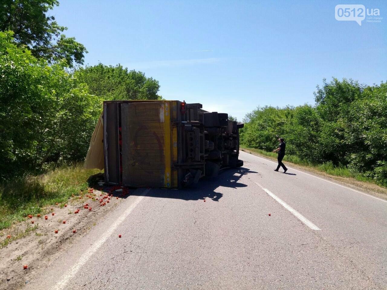 На трассе под Николаевом перевернулся грузовик с томатами, - ФОТО , фото-2