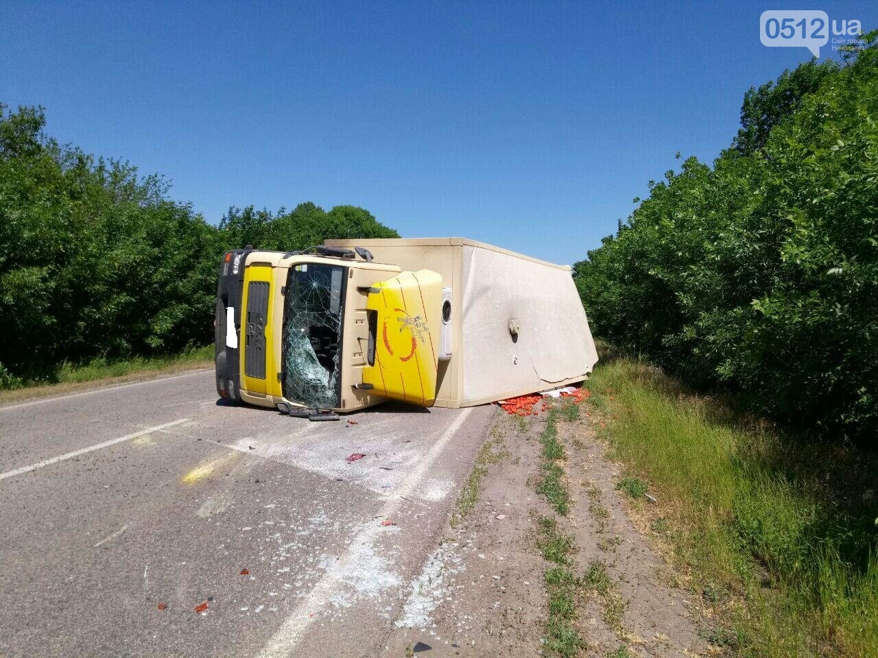 На трассе под Николаевом перевернулся грузовик с томатами, - ФОТО , фото-3