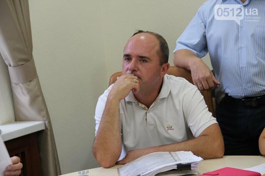 В Николаеве установят 6 новых светофоров, - ФОТО, фото-3