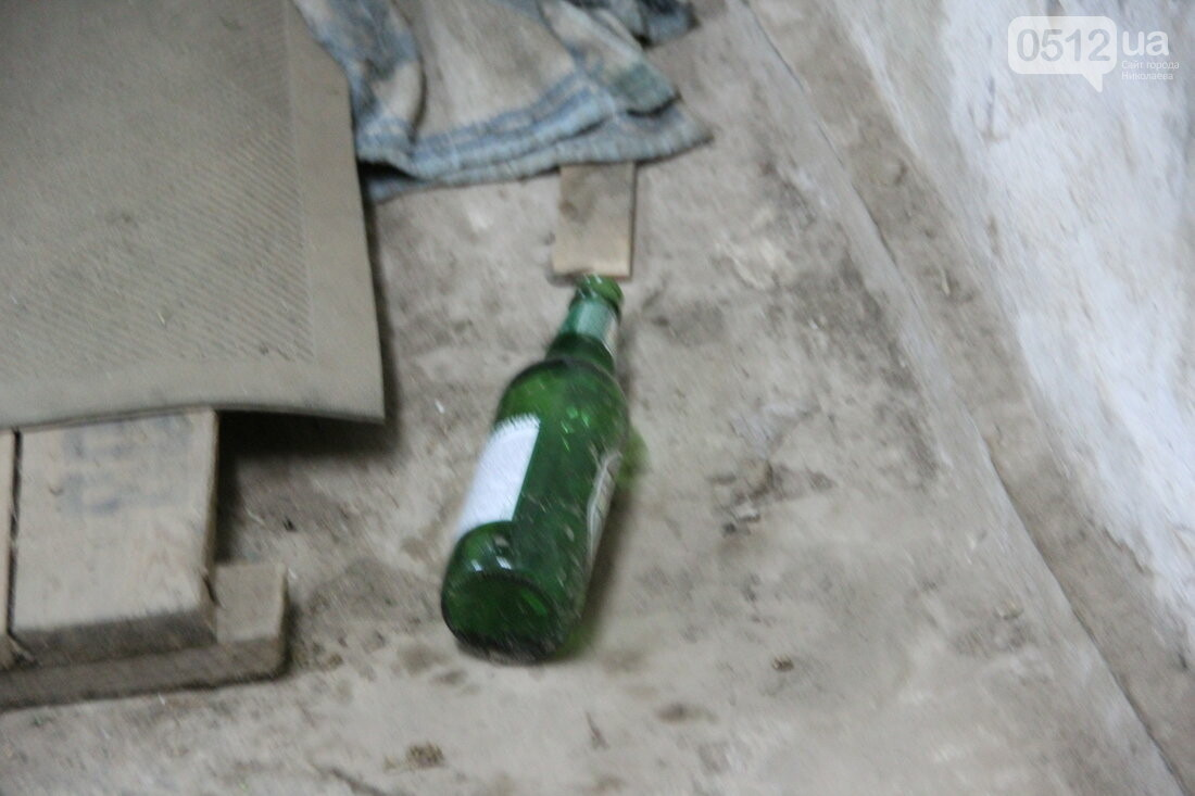 Отсутствие отопления, кучи мусора и мёртвые голуби: почему жильцы одного из домов Николаева решили уйти от МДЛ, - ФОТО, фото-11