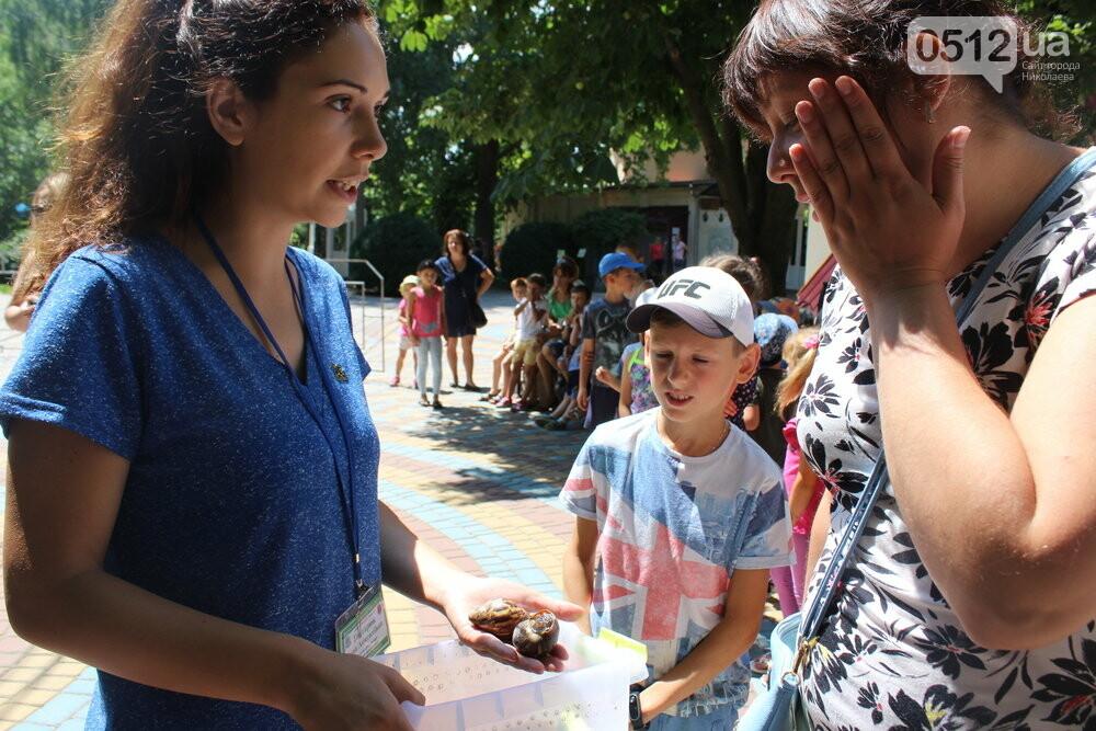 В Николаеве отпраздновали День семьи, - ФОТО, фото-25