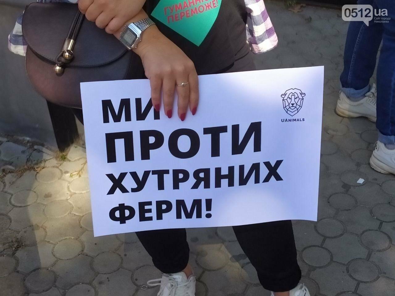 """""""Твоя шуба кричала перед смертью"""": в Николаеве прошел марш в защиту животных, - ФОТО, фото-7"""