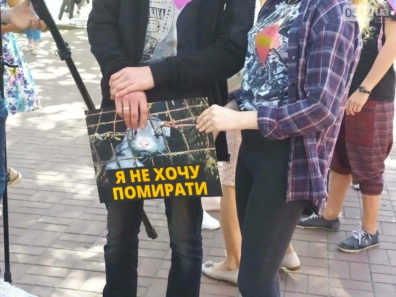 """""""Твоя шуба кричала перед смертью"""": в Николаеве прошел марш в защиту животных, - ФОТО, фото-6"""