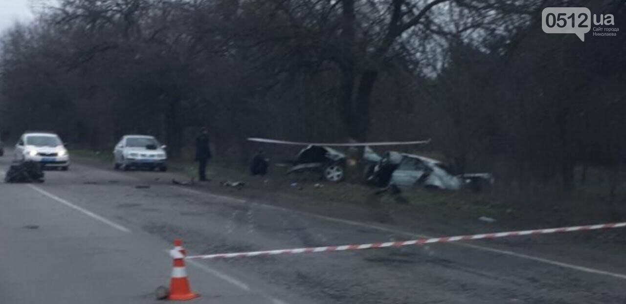 "На Николаевщине ""BMW"" ""влетел"" в дерево: водитель погиб на месте, - ФОТО, фото-1"