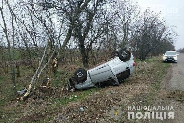 На Николаевщине авто вылетело с дороги и перевернулось - погиб водитель, фото-1