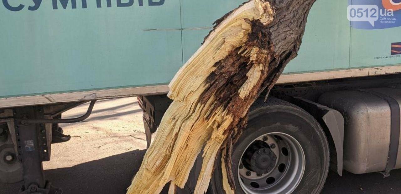 В центре Николаева седельный тягач врезался в ветку дерева, - ФОТО, фото-5