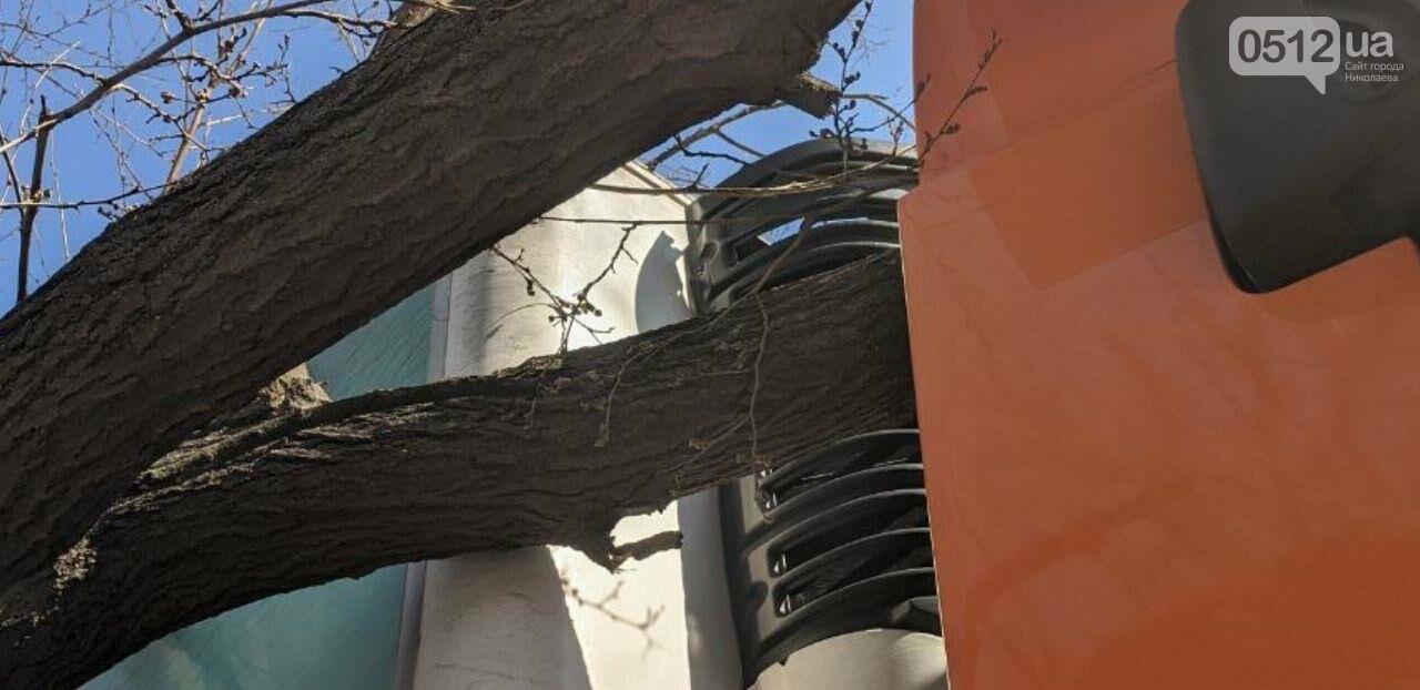 В центре Николаева седельный тягач врезался в ветку дерева, - ФОТО, фото-6