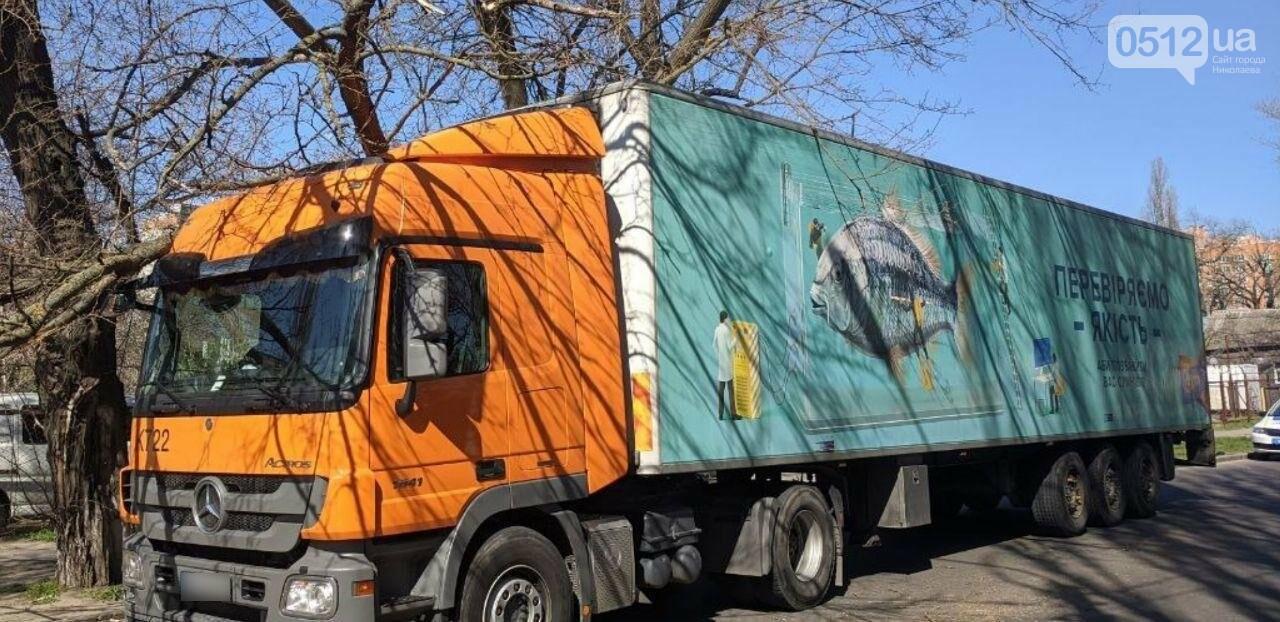 В центре Николаева седельный тягач врезался в ветку дерева, - ФОТО, фото-7