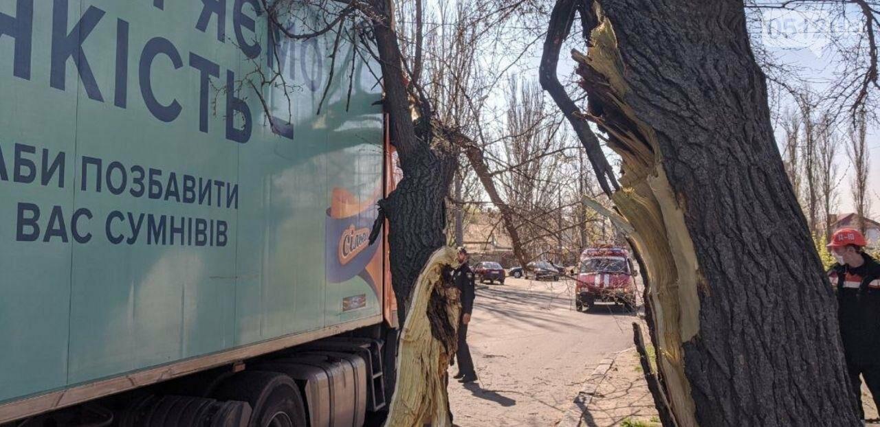 В центре Николаева седельный тягач врезался в ветку дерева, - ФОТО, фото-8