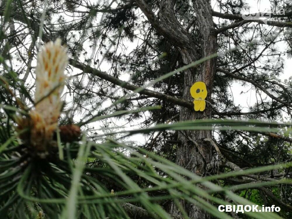 Духи леса: в Николаеве появились обереги против вырубки деревьев, фото-2