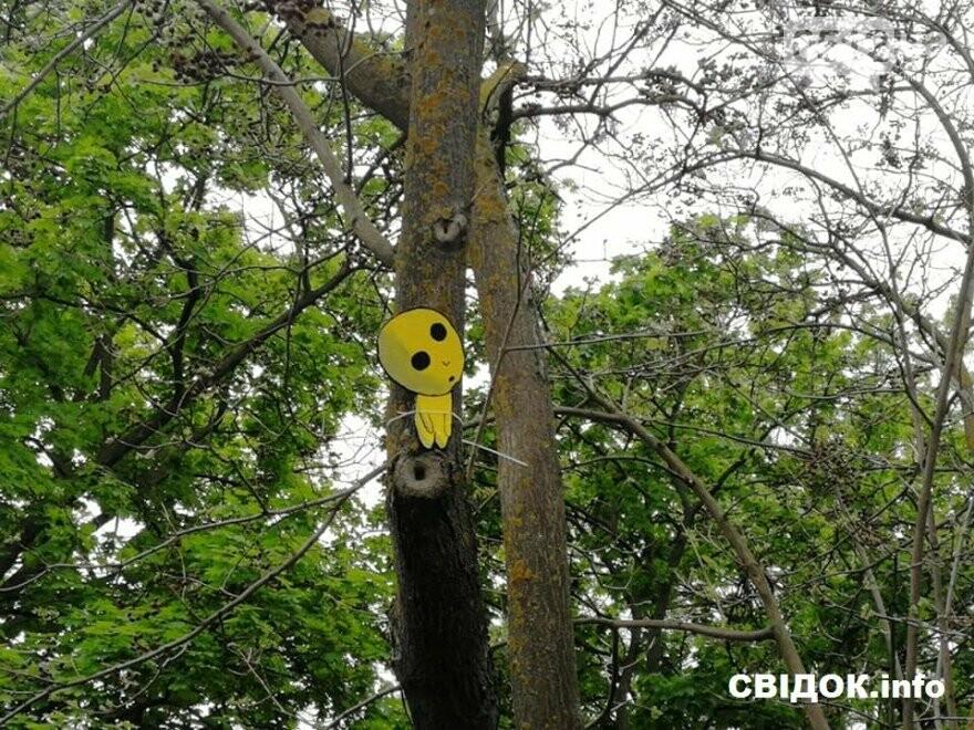 Духи леса: в Николаеве появились обереги против вырубки деревьев, фото-3