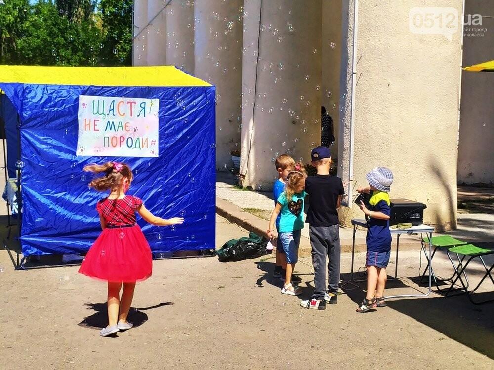 В Николаеве прошла выставка беспородных собак: многие хвостатые обрели новый дом, - ФОТО, фото-3