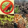 Семена, удобрения, СЗР