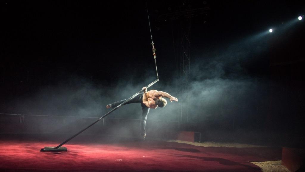 Итальянские артисты цирка привезут в Николаев праздник, фото-4