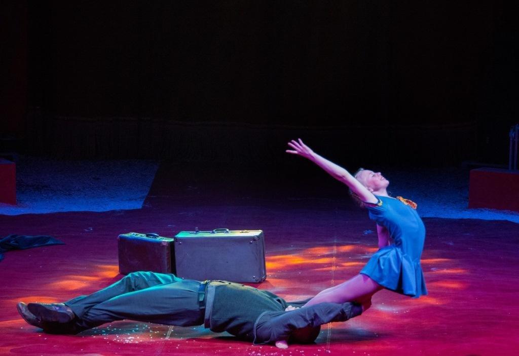 Итальянские артисты цирка привезут в Николаев праздник, фото-12
