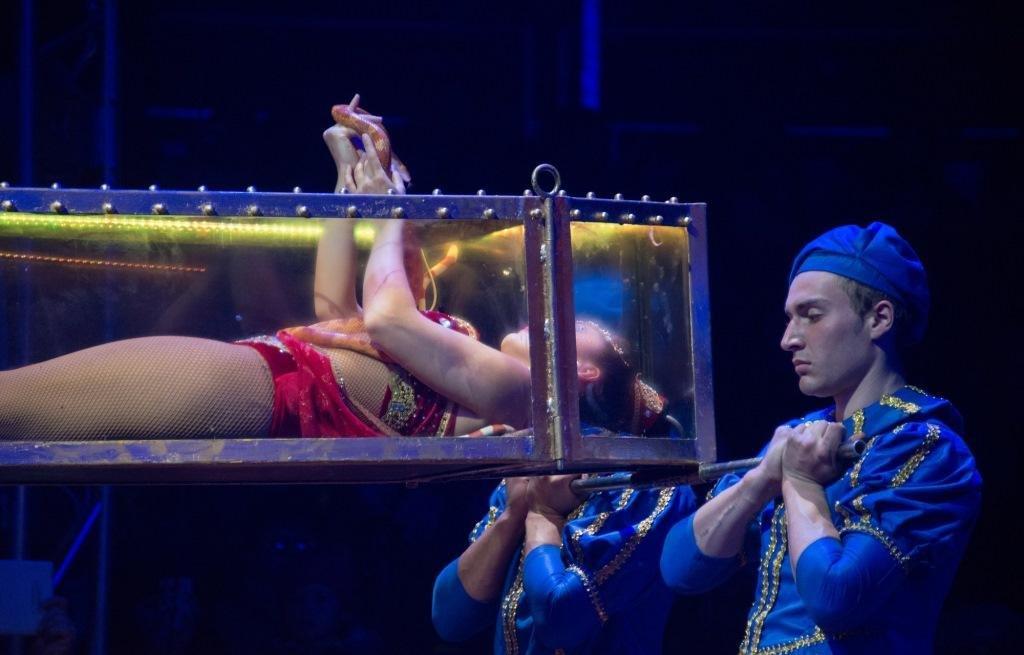 Итальянские артисты цирка привезут в Николаев праздник, фото-10