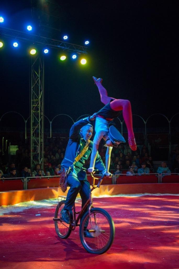 Итальянские артисты цирка привезут в Николаев праздник, фото-14