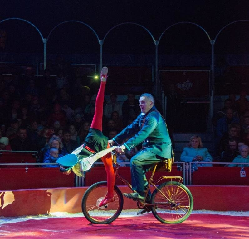 Итальянские артисты цирка привезут в Николаев праздник, фото-13