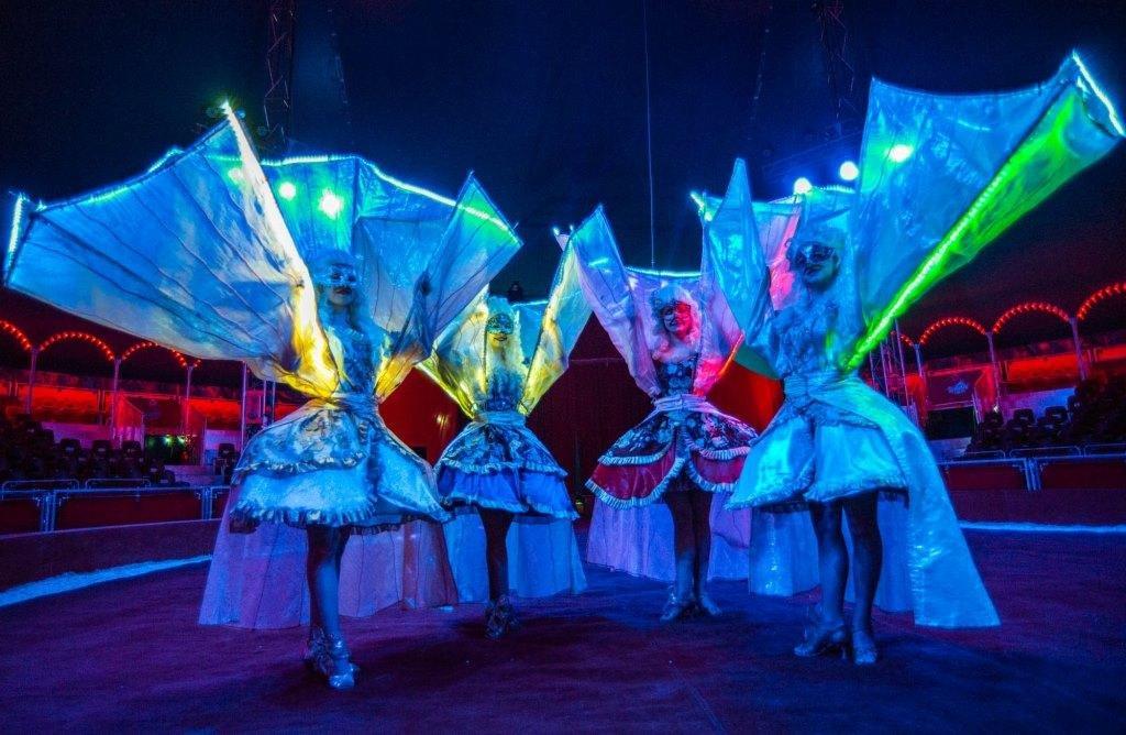 Итальянские артисты цирка привезут в Николаев праздник, фото-7