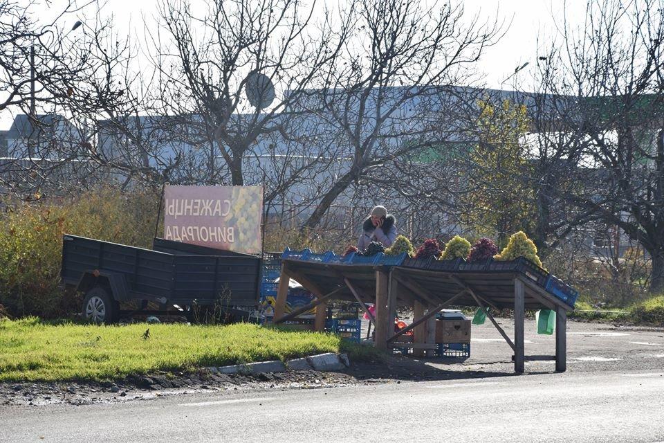 Савченко распорядился обустроить безопасную торговую точку для предпринимателей, торгующих вдоль Одесской трассы, - ФОТО, фото-3