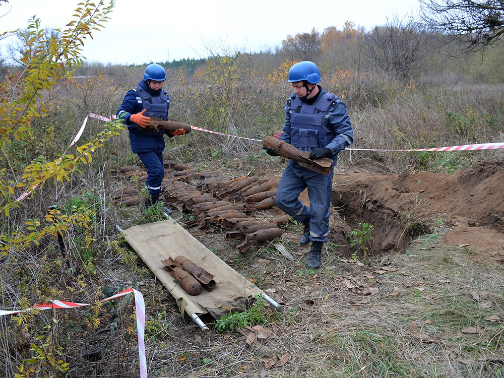 В селе на Николаевщине случайно обнаружили 63 авиабомбы, - ФОТО, фото-5