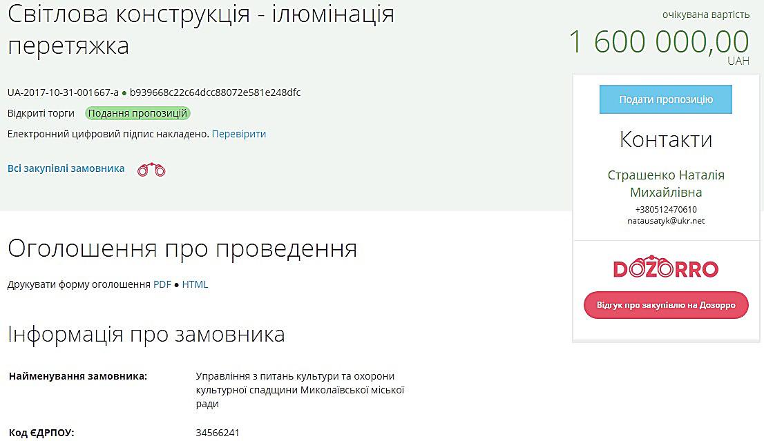 Мэрия Николаева потратит 2,5 млн грн на новогоднюю иллюминацию , фото-2