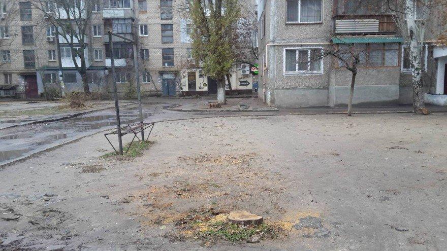 В Николаеве жители дома срубили молодые деревья, чтобы удобно было парковать машины, ФОТО, фото-2