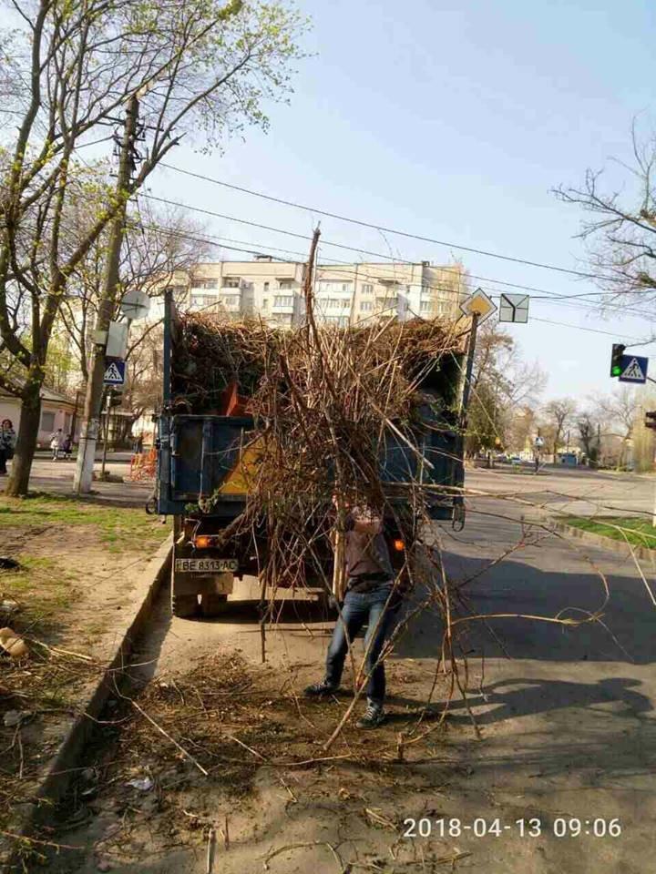 В Николаеве на нескольких улицах ликвидировали свалки, - ФОТО, фото-1