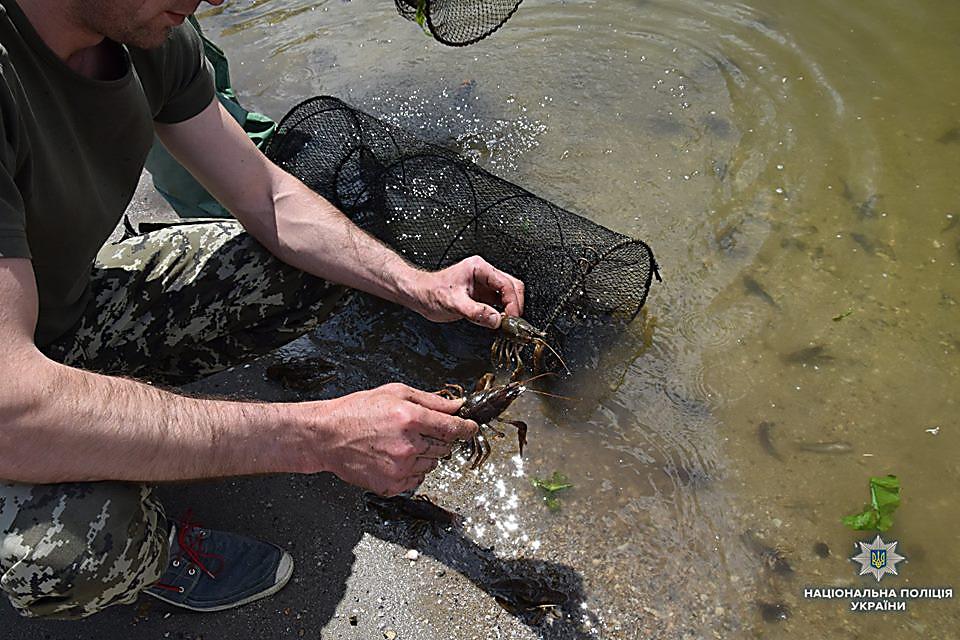 На Николаевщине водный патруль изъял 83 браконьерских орудий для ловли раков и рыбацкие сетки, - ФОТО, фото-1